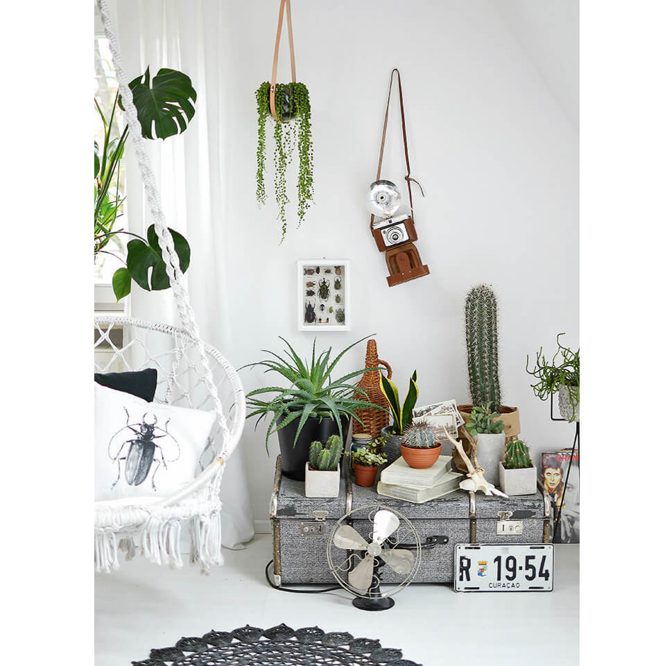 Wohnen in gr n dekorieren und stylen mit pflanzen for Dekorieren und wohnen