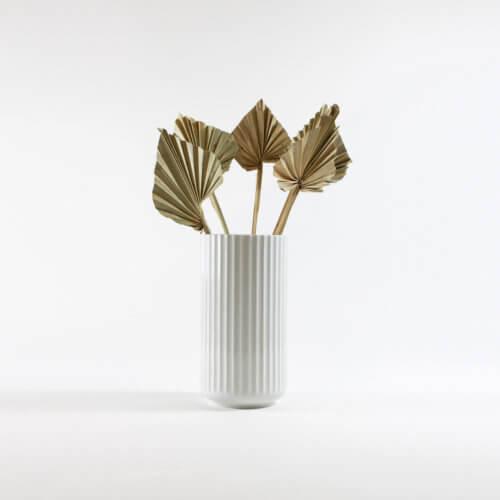 Palmenblatt Klein Natur